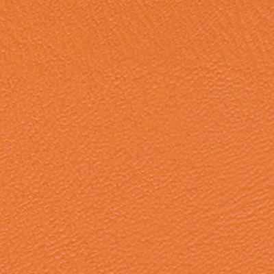 PISA-orange